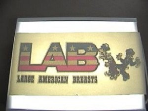 retro-lab-iron-on